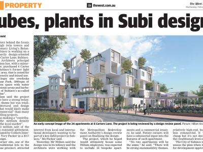 Cubes, plants in Subi design